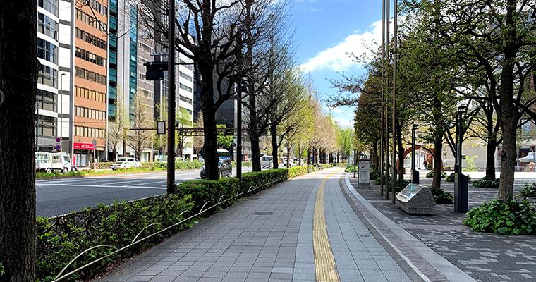 新宿の街並みコロナ期